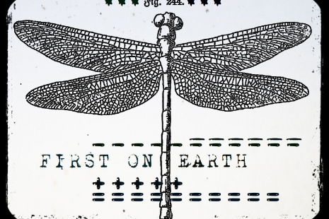 First on Earth Cling Rubber Stamp